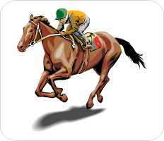 Email us for a free Horse Racing Pick